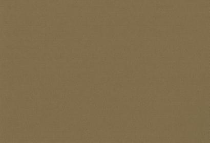 Ρόλερ CARNIVAL BLACKOUT TAUPE